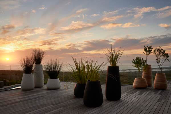 Tubers Sets and Sunset - Grootbos